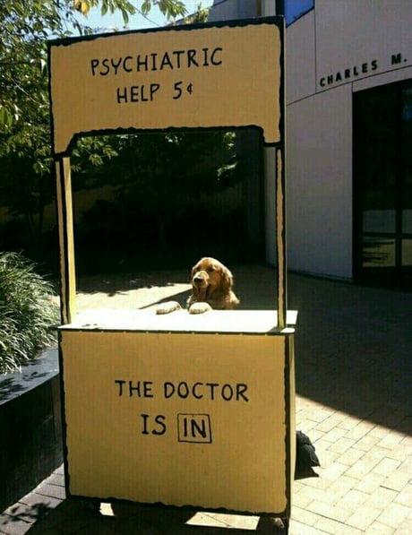 Doctor doggo