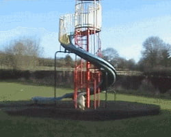 Who says slides are just for kids