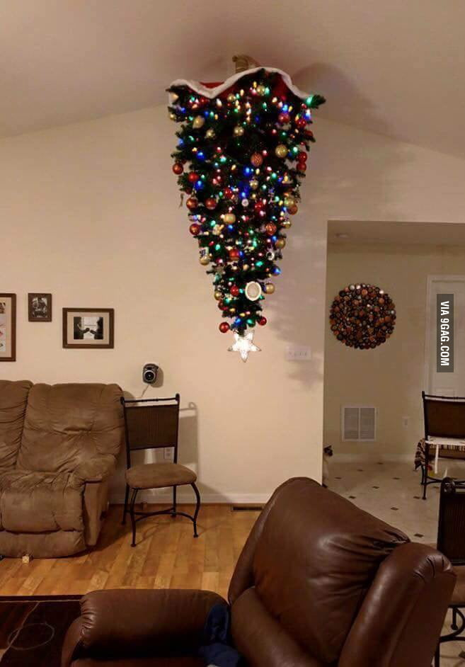 Special Christmas tree for cat owners - 9GAG