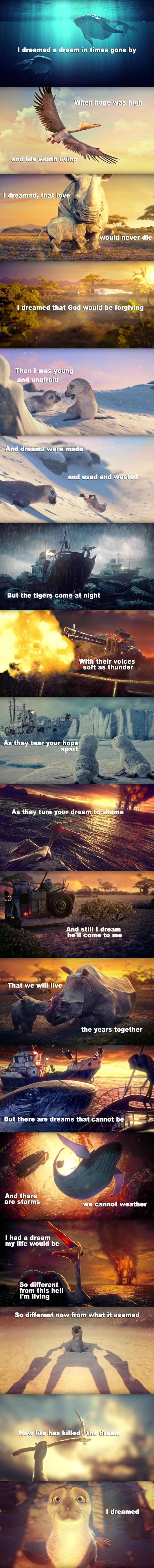 They also dream.