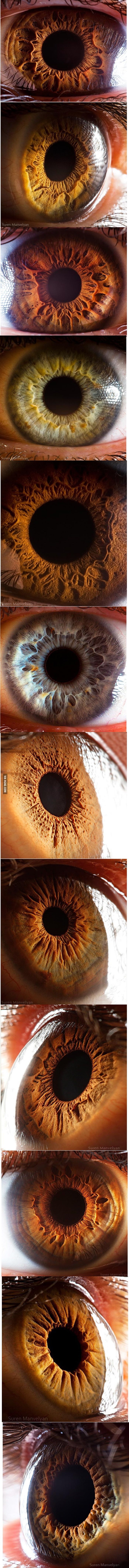 Mezmerising close-up photos of the human eye