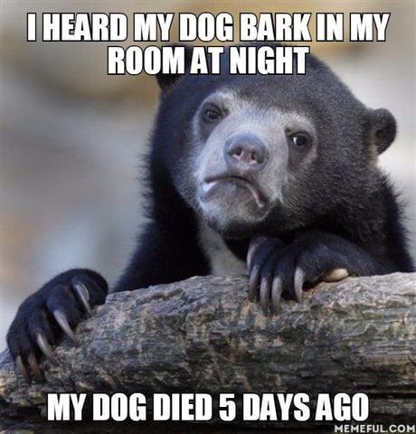 I live alone....