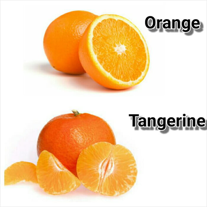 After noticing half of 9gag confuses a tangerine with an ...