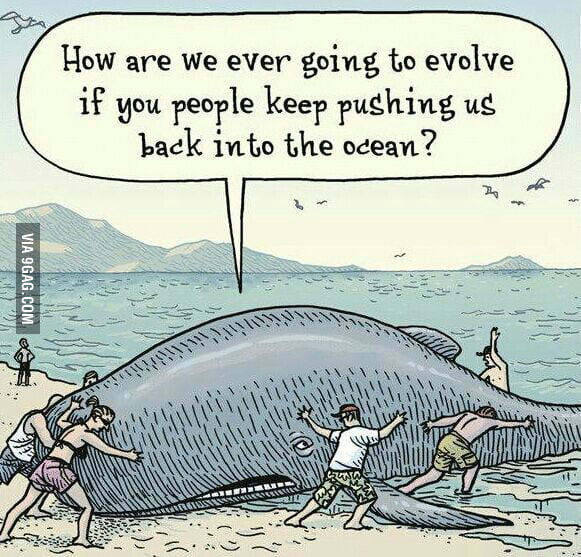 Image result for how are we going to evolve if you people keep pushing us back in?