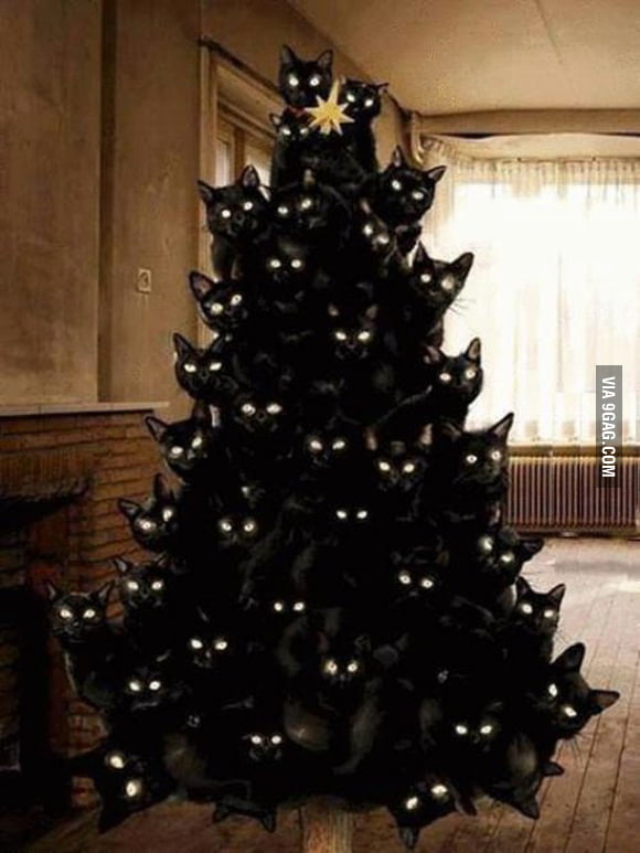 Catmas tree.